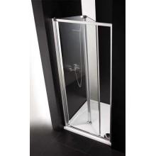 Душевая дверь Cezares Anima BS (70 см) прозрачное стекло